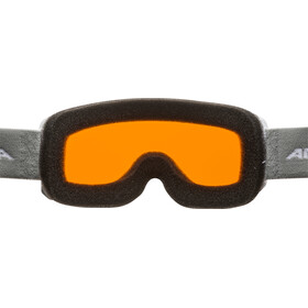 Alpina Scarabeo S DH Lunettes de protection, white